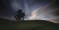 Electric (MartinSommer) Tags: longexposure clouds tree outdoors novascotia movement sunset nikon