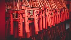 JP2016_11458 (hitorijun) Tags: japan kyoto  canon 5dmark3 holiday        hitorijun red