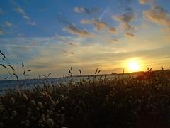 Sunset over Greve D'Azette (Richard Bougeard) Tags: jersey weather