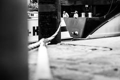 (jockellucas) Tags: schwarz schwaz bw black white schiff ship koch seil rope hafen