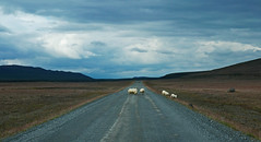 Kjolur Route - Iceland (Ste Cube) Tags: kjolur iceland islanda stecube desert deserto route pistakjolur