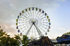 DSC_0582 (Frankie Tseng ()) Tags: amusementpark park festival festivals ferriswheel coffeemug carousel adventure blur pan rollercoaster scary speed pirateship spaceship bw bwphotography height kids kidspark