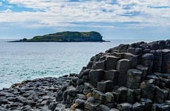 Another view of the Giant's Causeway and Cook Island - Fingal Head - Australia (andrew.walker28) Tags: fingal head giants causeway cook island tweed coast northern rivers new south wales australia sea ocean volcanic volcano lava flow goodjingburra