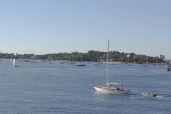 Sailboats in the Vineyard Sound (biesterd11) Tags: sail boat sailboat massachusetts ma capecod cape cod water marthas martha vineyard sound sailing falmouth