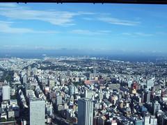 ランドマークタワーから横浜の街を見下ろすの写真