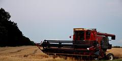 Lebanon, Missouri (Adventurer Dustin Holmes) Tags: farm missouri combine farms ozarks farmequipment farmmachinery combines lebanonmo farmequip lebanonmissouri lacledecounty redcombine redcombines