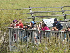 volunteer usfws wildliferefuge usfishandwildlifeservice nationalelkrefuge nwrs youthinnature youthinthegreatoutdoors visitorsbirdingbinoculars