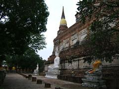 Phra Chedi Chaimongkol (oldandsolo) Tags: thailand buddha buddhism wat siam ayutthaya chedi buddhastatue buddhistshrine kingdomofsiam ancientthailand buddhistfaith ancientthaicapital phrachedichaimongkol
