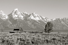 Wyoming (andrewpug) Tags: blackandwhite white house mountain black tree lonely mountaintop