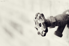 179 | 366 (EsotericMaiden) Tags: old blackandwhite brick love water wall outside conversion bokeh quote steel brickwall rusted faucet strength 365 knob corroded waterhose day179 366 spiget 365project 366project 179366 bewaterwithme