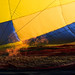 "Réchauffement climatique - Montgolfiades des champs - Bains les Bains • <a style=""font-size:0.8em;"" href=""http://www.flickr.com/photos/53131727@N04/7507338112/"" target=""_blank"">View on Flickr</a>"