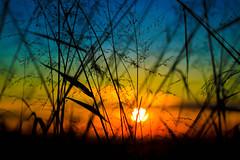 O Fim (soulmates.neverdie) Tags: cold 50mm yahoo flickr ceu frio fimdetarde momentomgico guasdelindia canon50d fotododiayahoo