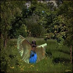 "Elfenwiese (Mara ~earth light~) Tags: inspiration nature photoshop magic meadow elf fantasy creativecommons "" mara~earthlight~ lovelymotherearth"" naturalbeings"