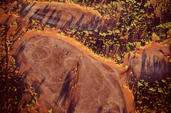 Aerial views around Alice Springs, NT (Cecilia Temperli) Tags: film nikon nt aerialviews australia northernterritory alicesprings fujivelvia50 redcentre nikonfm3a illparpavalley alicespringshelicopters illparpaclaypan alicespringscommonage