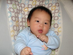 "2-month-old • <a style=""font-size:0.8em;"" href=""http://www.flickr.com/photos/22330476@N02/7625122728/"" target=""_blank"">View on Flickr</a>"