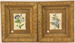 96. Pair of Hand-Colored Victorian Botanicals