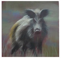 "Betty Harrison 'Wild Boar' oil on board 10 x 10 cm • <a style=""font-size:0.8em;"" href=""http://www.flickr.com/photos/77881881@N06/7686595042/"" target=""_blank"">View on Flickr</a>"
