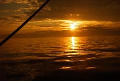 023 - English Channel sunset (breganze981) Tags: stavrossniarchos 2002 tallshop voyage ship sea colv merseyside police sunset