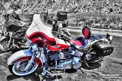 July 16 2016 - Sweet Softail Deluxe at Dead Indian Pass (lazy_photog) Tags: red beautiful photography scenery rally run lodge poker lazy motorcycle p elliott photog beartooth 071616beartoothandredlodge