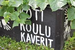 IMG_0383 (www.ilkkajukarainen.fi) Tags: home school friends porvoo kaverit koulu koti suomi finland europa eu scandinavia kasvimaa hand ksi vihannes juures