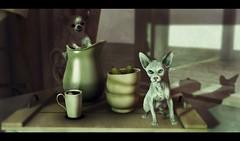 Cat&Dog (IGOTIT [blog]) Tags: blackbantam blog breakfast c88 cat collabor88 dog igotit igotitblog k9 kunst kustom9 life second secondlife serenitystyle shinyshabby sl