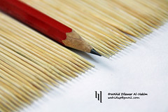 Be Extraordinary! (WahidHakim) Tags: extraordinary outstanding stilllife outofthebox wahid pencil red wood stationary exceptional