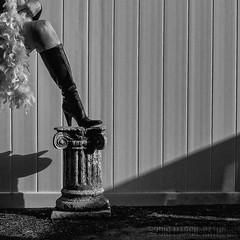 .:. (MacroMarcie - scarce 'til mid-sept but not quittin) Tags: square boots prada fuji x20 feather boa selfie selfportrait grain noise blackandwhite black white shadesofgrey light shadow macromarcie
