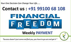 Financial Freedom-006 (Part Time Work) Tags: extra income part time work full additional