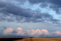 After the Storm (C-Dals) Tags: sky storm clouds nikon horizon alberta prairie nikkor 1855mmf3556gvr d5100