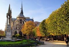 Notre Dame de Paris en automne (al253) Tags: paris france reflection soleil colours sony reflets notredamedeparis couleursdautomne