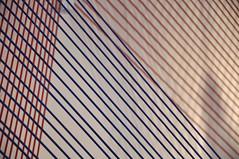 DSC_7630 [ps] - Strumshine (Anyhoo) Tags: blue red white thread pattern stripes rope line bands repetition string strings shopwindow stripey windowdisplay redwhiteandblue oxfordstreet johnlewis shopwindowdisplay anyhoo photobyanyhoo