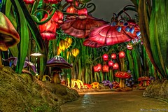 Night on the Hollow.... (Ring of Fire Hot Sauce 1) Tags: night disneyland hdr fantasyland pixiehollow