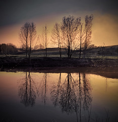 (inmacor) Tags: trees sunset france water rio reflections canal agua arboles reflejo lille ltytr2 ltytr1 inmacor mygearandme mygearandmepremium blinkagain bestofblinkwinners