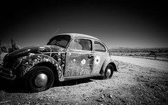 """The outback Beetle - doesn't need water but does need air • <a style=""""font-size:0.8em;"""" href=""""http://www.flickr.com/photos/44919156@N00/7260827882/"""" target=""""_blank"""">View on Flickr</a>"""