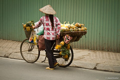 Pineapple Bike (davidkoiter) Tags: street city travel woman bike bicycle canon eos vietnamese vietnam riding pineapple 7d l series hanoi merchant 70200 f4 2012 f4l koiter davidkoiter