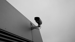 being watched (Artrian) Tags: camera bw lines lumix grey blackwhite random cam hamburg grau cctv panasonic spy schwarzweiss spying elbe m43 mft microfourthirds panasoniclumix14mmf25asphpancake dmcg3