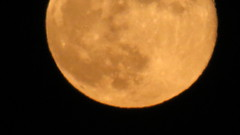 """Orange"" Full Moon 2 (camera_chi1225) Tags: chicago june illinois il fullmoon junemoon"