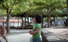 (tigermilk0808) Tags: film child hiroshima miyajima    portra160