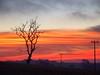 Céu de Outono, Ivaiporã Paraná (Mauricio Portelinha) Tags: outono tarde ivaiporã mmp1172