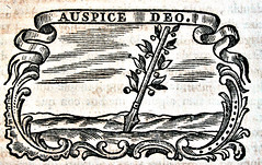 Anglų lietuvių žodynas. Žodis auspice reiškia n 1) (būsimojo įvykio) geras ženklas; 2)pl globa; under smb's auspics globojant, remiant lietuviškai.