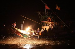 ~~ (PS~~) Tags: fish night boats boat fishing ancient fishermen  traditional taiwan   pesca    fisheries                            sulfurfirefishing