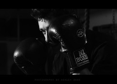 The Boxer (Ashley Daws) Tags: new bw white black eye leather sport training canon fighter zealand gloves nz sweat boxer boxing quadra elinchrom strobist 580exii