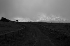 Track (nag #) Tags: road sky bw cloud mountain fence alley pasture