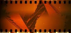 891103 (Marcin Kubiak) Tags: gold kodak iso400 poland warsaw analogue multiexposure redscale 8911 sprocketrocket diyredscale epson2400photo