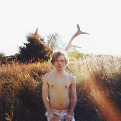 Who I Am This Week (Savannah Daras) Tags: antlers sunset golden field indiana nostalgia curls bradwagner flare sun natural boy male nature animal afternoon midwestflickrgathering