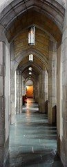 Vaulted (marensr) Tags: rockefeller memorial chapel uchicago university chicago gothic architecture vaulted aisle arches stonework