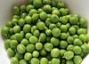 10-IMG_3373 (hemingwayfoto) Tags: ackerbau biologisch erbse frisch geöffnet gemüse grün hülsenfrucht landwirtschaft lebensmittel markt nahrung nahrungsmittel natur pflanzen pflanzlich produkt roh süs vegetarisch