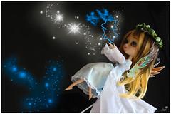 Asgard (Near_ River) Tags: pullip stica fullcustom xxxtrasmall aroabenzal asgard fairy