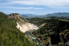 Yellowstone River (YuriZhuck) Tags: us usa wy wayoming yellowstone park nature landscape river canyon