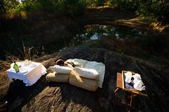 luxury jungle lodge kanha (Nishagoyani) Tags: kanhasafariandstay luxuryhotelsandjungleresortsatkanha luxuryjunglelodgekanha indianluxuryforestsaccommodation kanhajungleluxuryaccommodationbooking hotelsandresortsinkanhanationalpark luxuryhotels